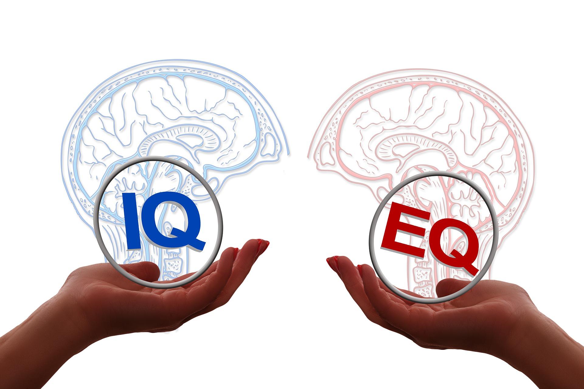 factors emotional intelligence