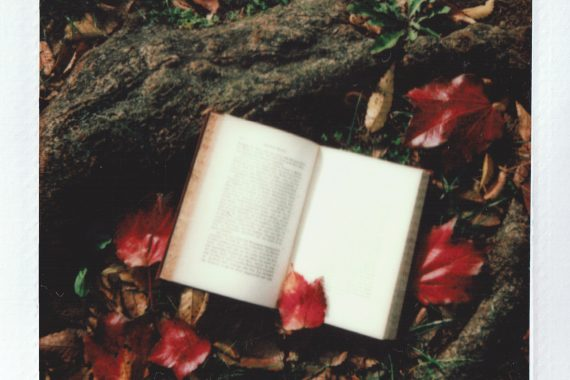 three books reading